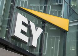 """Ernst & Young"" kripto-vergilərin hesablanmasını asanlaşdırdı"
