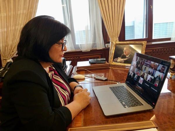 Milli Məclisin AŞ PA-dakı nümayəndə heyətinin videokonfrans formatında iclası keçirilib