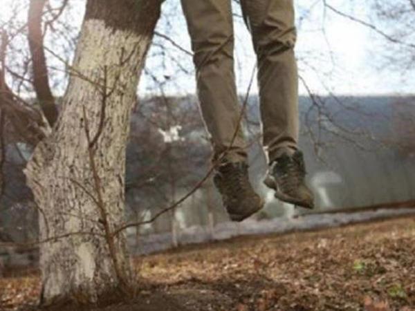 Alça ağacından asılmış meyit tapıldı - Göyçayda dəhşət