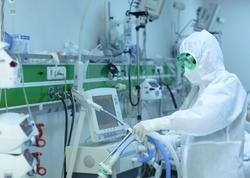 Azərbaycanda koronavirusa yoluxmanın 55,1 faizi Bakının payına düşür