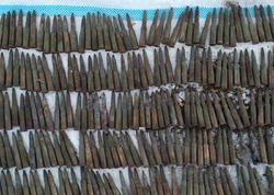 Sumqayıtda 250 patron aşkar olunub -FOTO