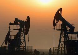 Azərbaycan iyunda gündəlik 553,8 min barrel xam neft hasil edib