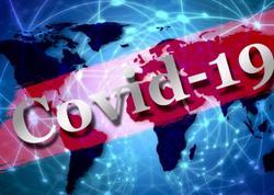 Azərbaycanda bir gündə 531 nəfər COVID-19-a yoluxub, 6 nəfər vəfat edib, 514 nəfər sağalıb