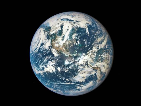 Yer üzündə bütün canlıları əhatə edən vahid atlas yaradılacaq