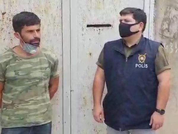 Həyətində narkotik əkib-becərən şəxs saxlanıldı - FOTO