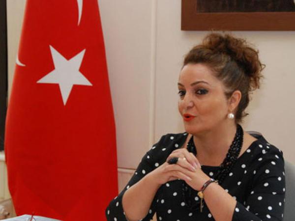Azərbaycan diasporu beynəlxalq təşkilatlara etiraz bəyanatı ünvanladı