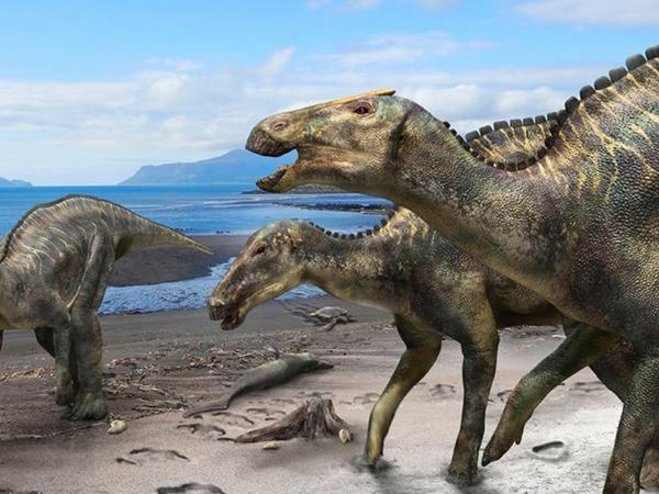 Alimlər: Dinozavrların indiki Alyaska ərazisində yaşamasına və çoxalmasına dair sübutlar tapılıb