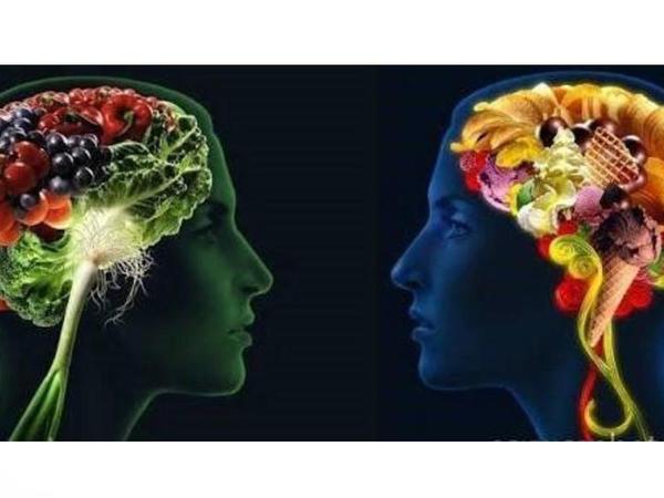 Beynin funksiyalarını sağlamlaşdıran, damar tıxanıqlığını məhv edən ƏN FAYDALI QİDALAR