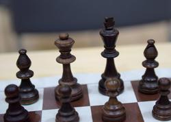 Latviyada dünyada ilk dəfə olaraq şahmatın tədrisi üzrə onlayn platforma yaradılıb