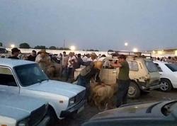 Azərbaycanda daha bir bazarda heç bir karantin qaydalarına əməl edilmir - FOTO