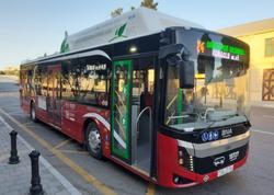 BNA: Xətlərə rekord sayda avtobus çıxarılıb
