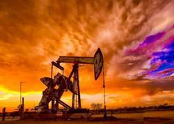 Qlobal neft tələbatı cari ildə sutkada 7 milyon barrel artacaq