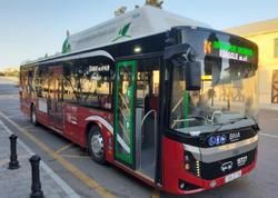 Ekspress avtobusların fəaliyyəti dayandırıla bilər - BNA