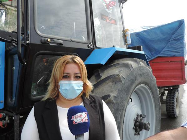 """""""İlk vaxtlar çoxları mənə """"bu iş sənlik deyil"""" deyirdi""""  - traktorçu qadın - FOTO"""