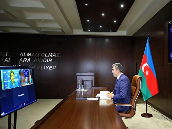 """""""Yüksəliş"""" müsabiqəsi Dövlət Miqrasiya Xidmətinin rəisinin təqdimatında vebinar təşkil edib - FOTO"""