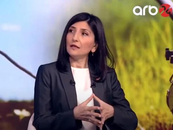 Sevil Mikayılova: Bu gün Ermənistan rəhbərliyi sülhə yox, müharibəyə hazırlaşır - VİDEO