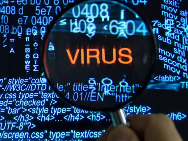 Fırıldaqçı viruslar vasitəsilə həyata keçirilən kiberhücumların sayı kəskin artıb