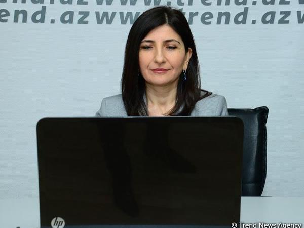 Milli Məclisin deputatı Sevil Mikayılova seçiciləri ilə növbəti onlayn qəbul keçirib - FOTO