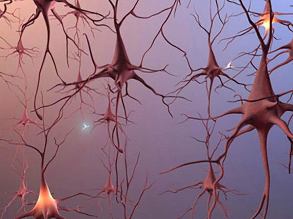 Sinir liflərinin nəqletmə qabiliyyətinin pozulması