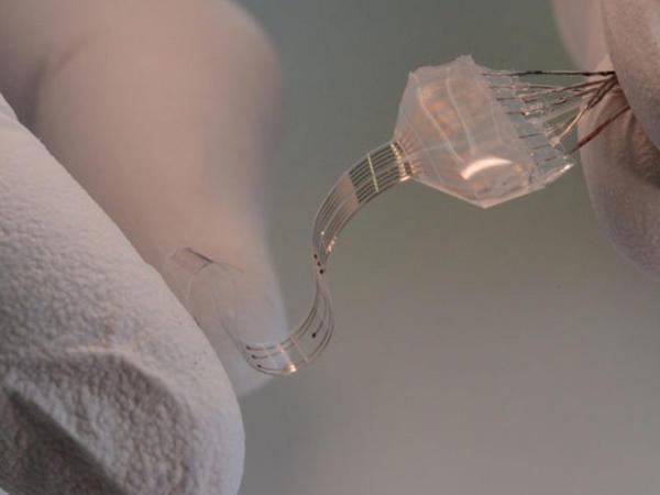 Onurğa beyini implantını 3D çapı vasitəsilə həyata keçirmək olar