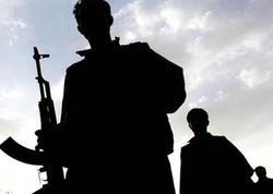 Hücuma hazırlaşan 7 PKK/YPG terrorçusu məhv edildi