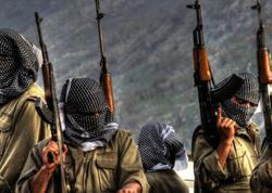 Türkiyə Suriyada daha 10 terrorçunu zərərsizləşdirdi