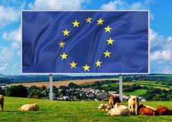 Avropa İttifaqı İspaniyaya 47 milyard avro ayıracaq