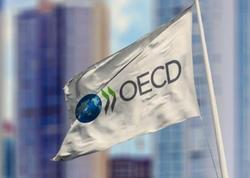 OECD: Pandemiyanın zərəri ötən bir neçə ayda deyil, qarşıdakı aylarda müşahidə ediləcək