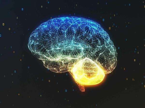 Alimlər insan beyni ilə kainat arasındakı oxşarlıqları aşkar ediblər
