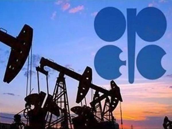 OPEC+ neft hasilatını daha iki-üç ay müddətinə azaltmaq niyyətindədir