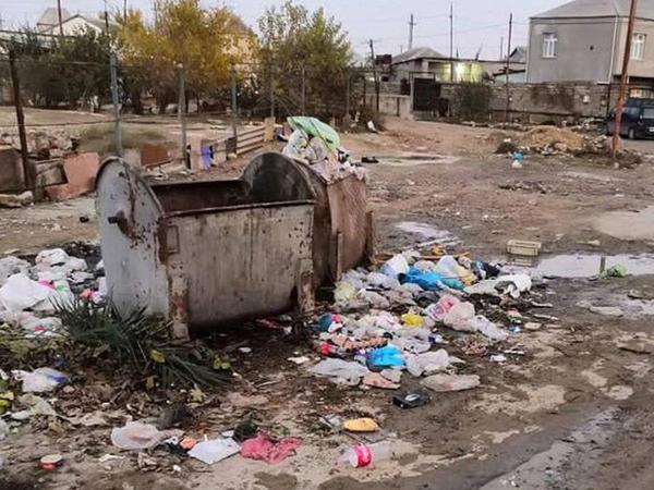 """""""Zibil vaxtında toplanmır deyə itlərin məskəninə çevrilib"""" - FOTO"""
