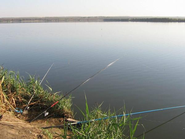 Azərbaycan balıqçılığın inkişafı üçün azad edilmiş ərazilərin potensialından istifadə edəcək