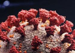 Koronavirusa təkrar yoluxma halları daha ağır nəticələr verir
