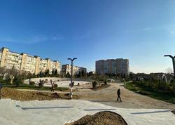 "Bakıdakı bu parkın 70 faizi meşə zonası olacaq - <span class=""color_red""> FOTO</span>"