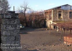 Zəngilan rayonunun Üçüncü Ağalı kəndi - VİDEO - FOTO