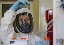 Koronavirusun yeni ştammı daha bir ölkədə aşkar olundu