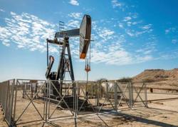 ABŞ 2021-22-ci illərdə Azərbaycanda neft hasilatı ilə bağlı proqnozlarını açıqlayıb
