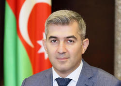 """""""Pandemiya başlayanda ölkəni tərk edə bilməyən 60 min əcnəbi var idi"""""""