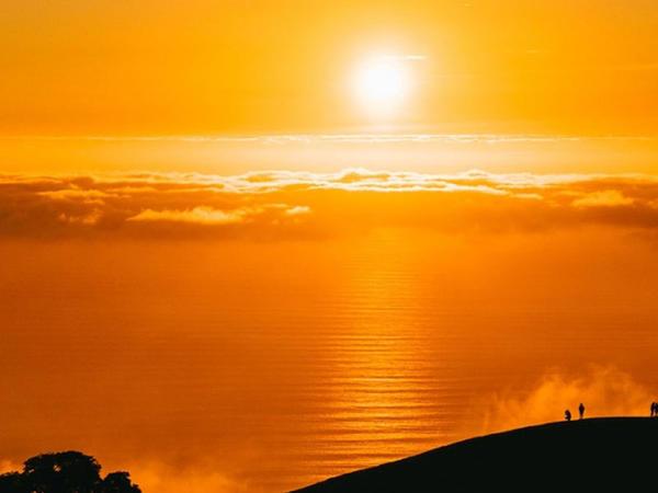 Ümumdünya Meteorologiya Təşkilatı 2020-ci ilin meteomüşahidə tarixində üç ən isti illərdən biri olduğunu təsdiqləyib