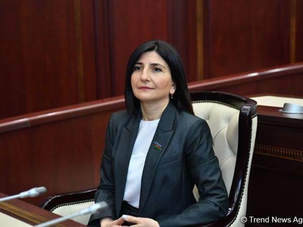 Sevil Mikayılova: İslam dini abidələrinə qarşı erməni vəhşiliyi dünya birliyi tərəfindən pislənməlidir
