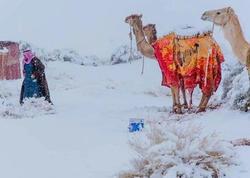 Saxara səhrasına qar yağıb - FOTO