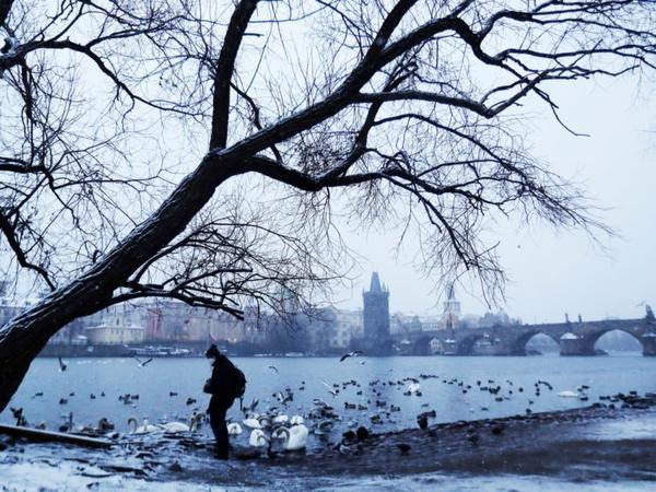 Avropanın bəzi ölkələrində havanın temperaturu mənfi 28 dərəcəyə düşüb