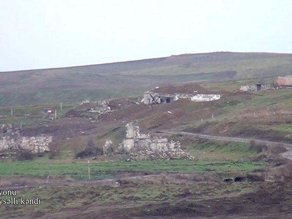 Füzuli rayonunun Aşağı Veysəlli kəndi - VİDEO - FOTO