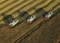 FAO azad edilmiş ərazilərimizdə kənd təsərrüfatını inkişaf etdirəcək