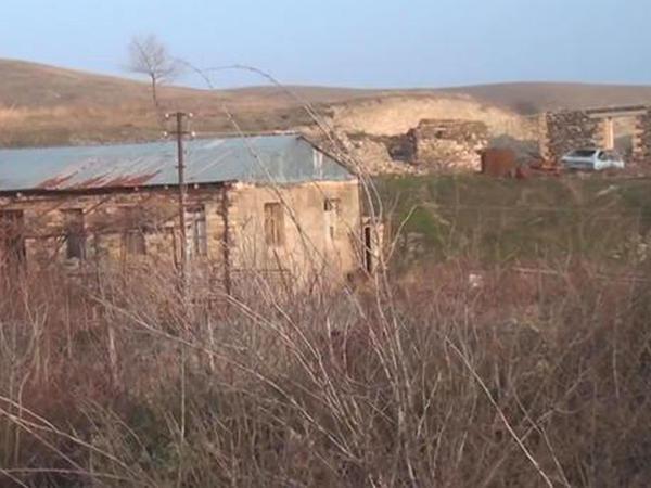 Qarabağda kənd təsərrüfatı ilə bağlı yeni planlar - VİDEO