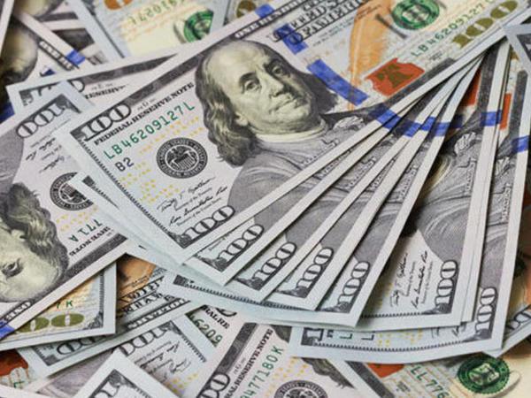 Ermənistan Qarabağın kənd təsərrüfatını ildə 100 milyon dollarlıq qarət edirdi