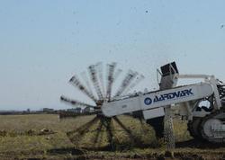 Füzulidəki aeroportun minalardan təmizlənməsi üçün azərbaycanlı mütəxəssislərə təlim keçiriləcək - FOTO