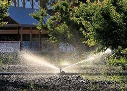İçməli su ilə ağacların suvarılmasının qarşısı alınıb - ETSN
