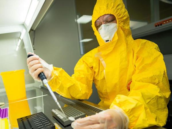 Alman fizik koronavirusun mümkün yaranma versiyası haqda