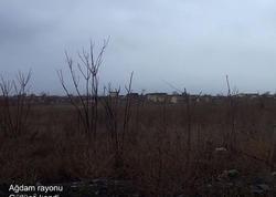 Viran edilmiş Güllücə kəndi - FOTO - VİDEO